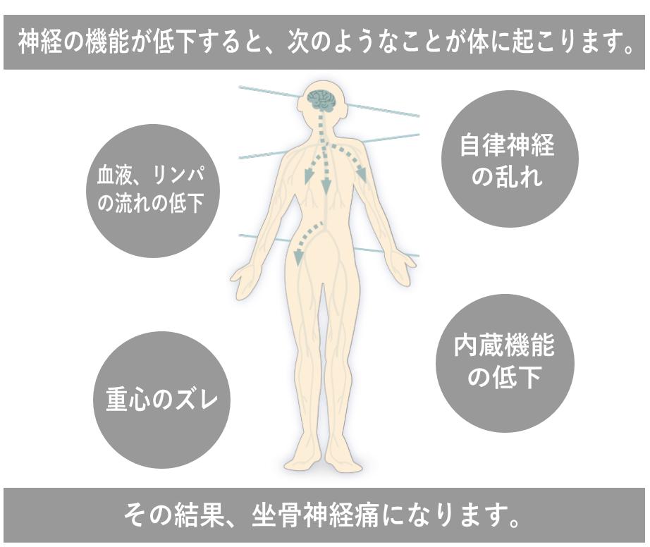 松戸市の坐骨神経痛で選ばれる理由1