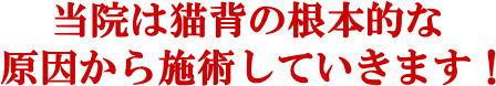 松戸市猫背矯正6