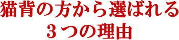 松戸市猫背矯正1