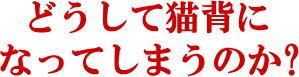 松戸市猫背矯正3