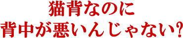 松戸市猫背矯正5