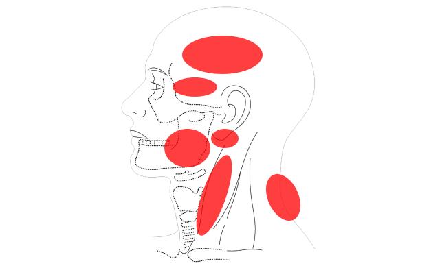 顎関節症の痛む場所